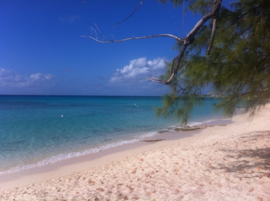 Diy Shore Excursions In Cozumel And Grand Cayman How Do
