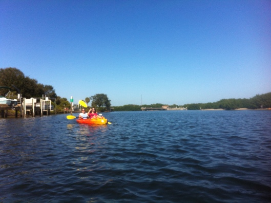 There are plenty of open areas to kayak around as well as narrow mangrove filled strips at Weedon Island, St. Petersburg.