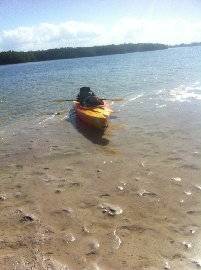 This sand bar provided the perfect stopping point for a nice leisurely lunch and a walk around in the middle of the bay at Weedon Island, St. Petersburg.