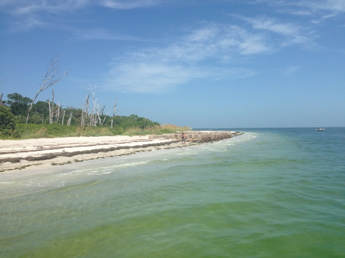 One of the many beaches at Egmont Key.  This is where the ferry drops you off from Ft. Desoto, St. Petersburg.