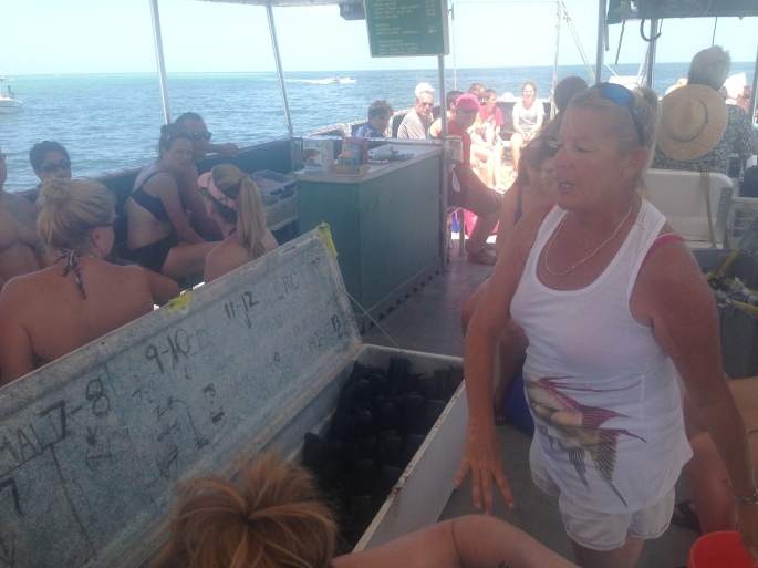 Ample snorkeling equipment is aboard the Tampa Bay Ferry from Fort Desoto, St. Petersburg to Egmont Key.