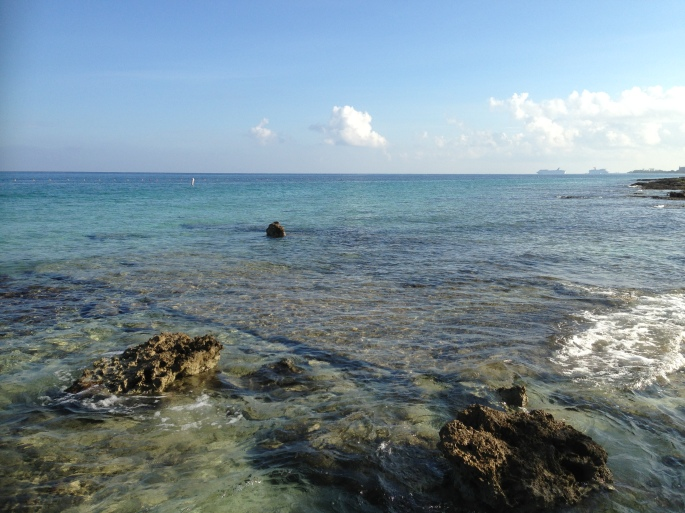 You can see cruise ships in the distance from Playa Corona and see the quality of the snorkeling experience from this picture which has some terrific live coral and plenty of incredible underwater life to view.