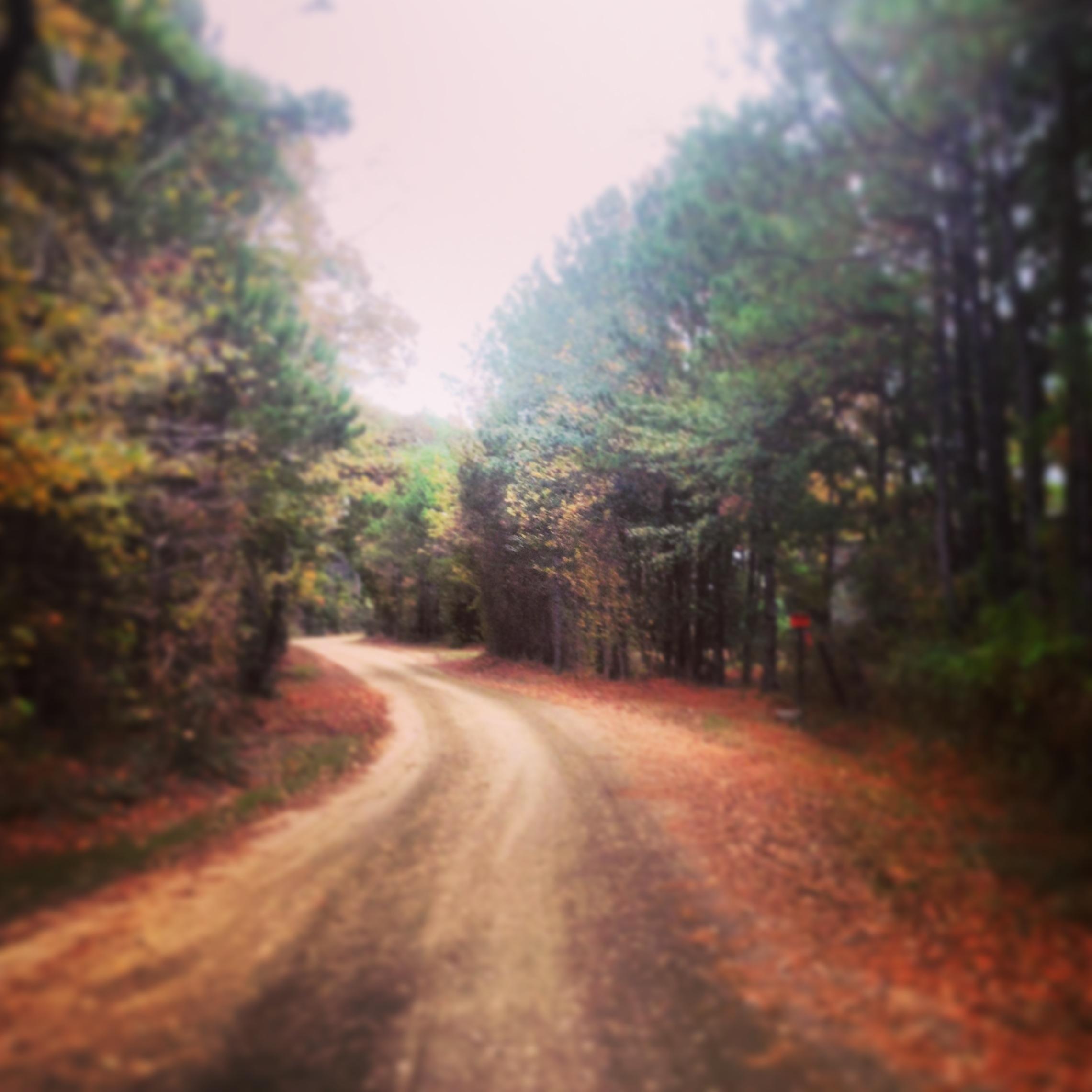 Woodville Livingston Jasper Texas Road Trip How Do I