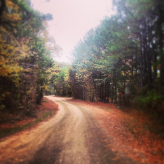 The charming and rural road into the KOA Brookeland Texas