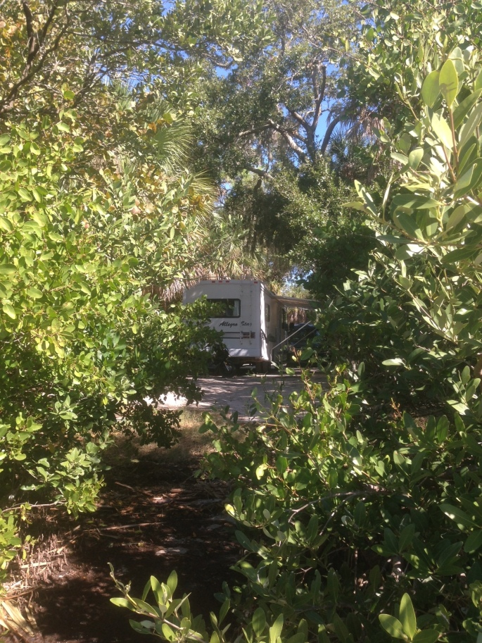 Our RV on a waterfront site in the pet-friendly section of the campground at Fort Desoto Park, St. Petersburg, Florida.