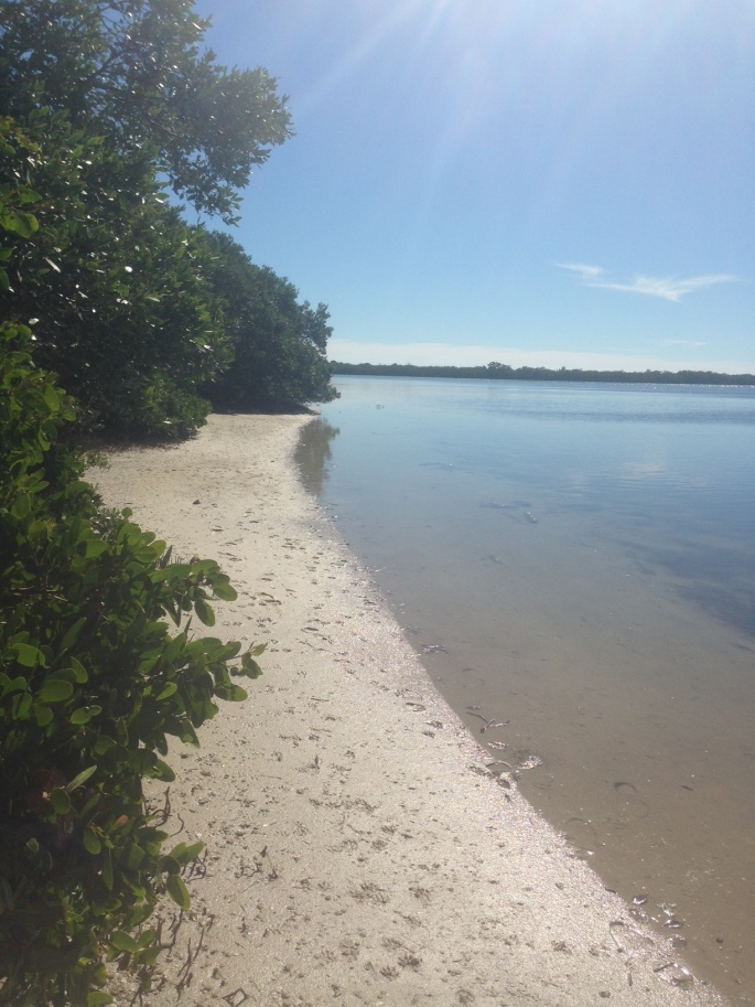 The view from our waterfront site at the Fort Desoto Campground, St. Petersburg, Florida.