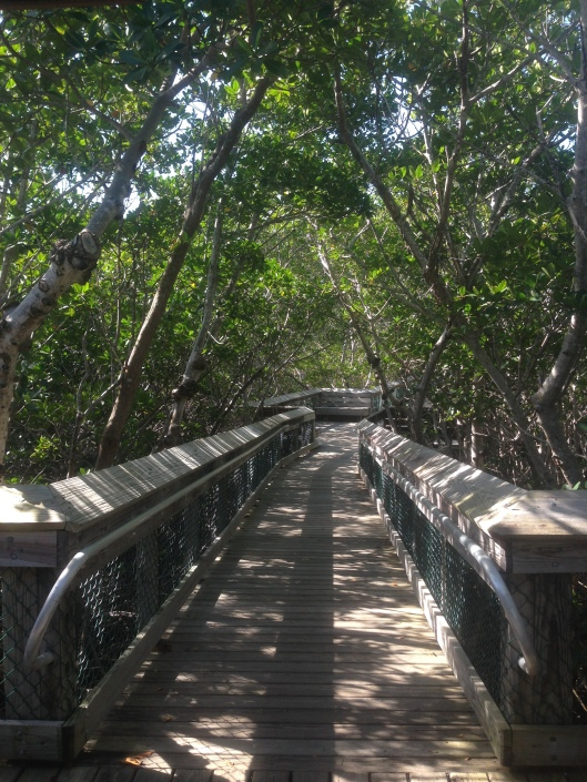 This boardwalk will take you through nature to the Atlantic Ocean at the Long Key State Park.