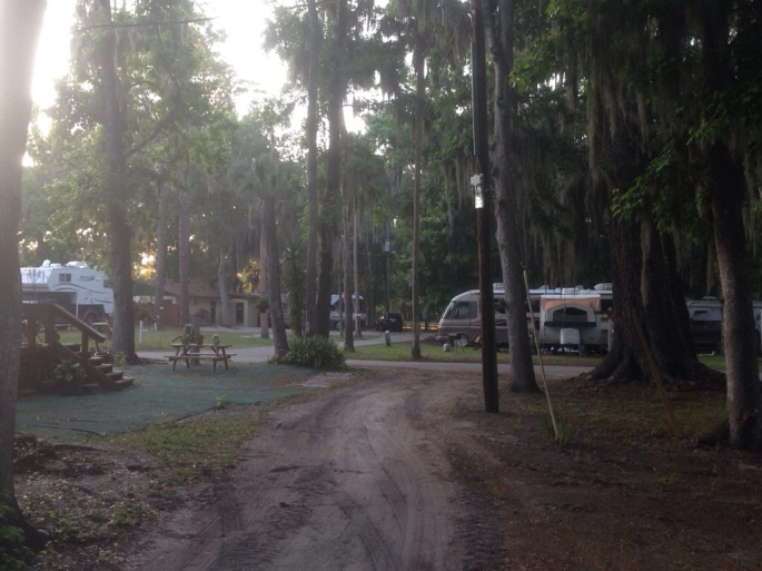 The Nova Family Campground nearest the town center of Port Orange is a great friendly place with many wooded sites and lots of options from tent camping to pull through big rig sites to cabins.