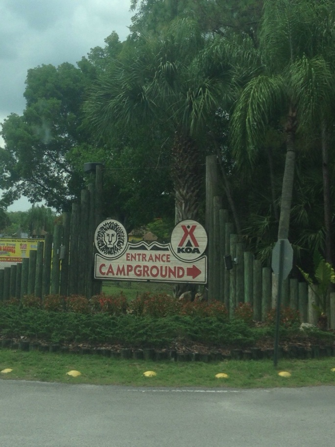 The entrance to the KOA Kampground in Loxahatchee is right on the grounds of Lion Country Safari and is the perfect place to stay for several days and visit the zoo.