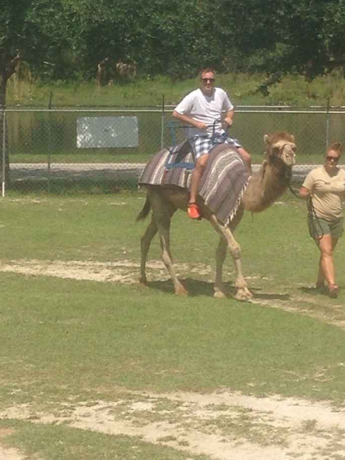 Riding the camel at the park was a highlight of our trip.