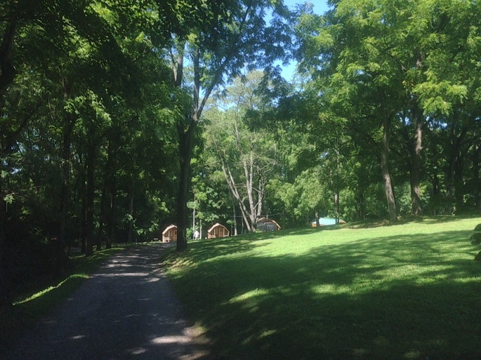 One of the roads in the KOA Coatesville (West Chester/Philadelphia) with cabins in the distance.