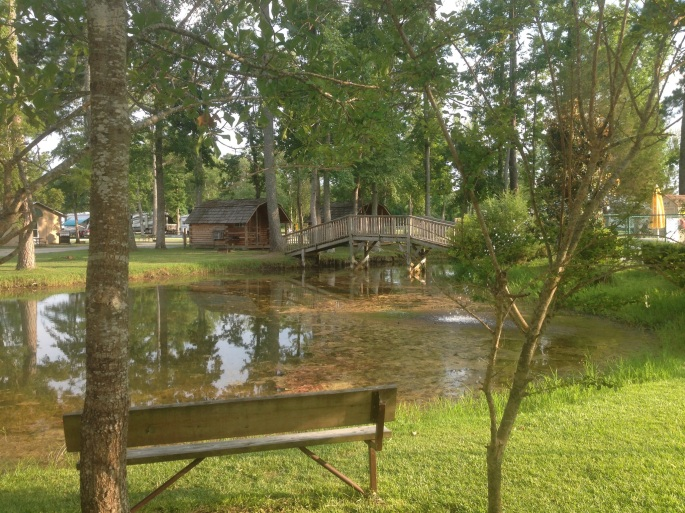The KOA Campground was inviting at New Bern and this peaceful scene is just one of the reasons this is a great camping experience.