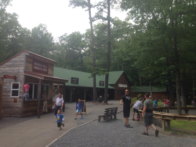 There are a collection of buildings all offering something to do or to eat at Bushkill Falls.