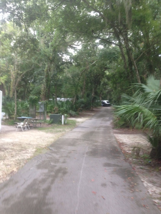 The campground at Kathryn Hanna Park near the beach in Jacksonville is a great place to call home for a while.