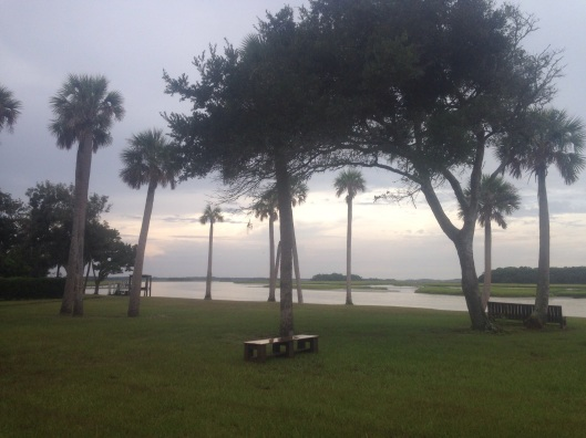 A nice view of the water from the Kingsley Plantation near Jacksonville, Florida.