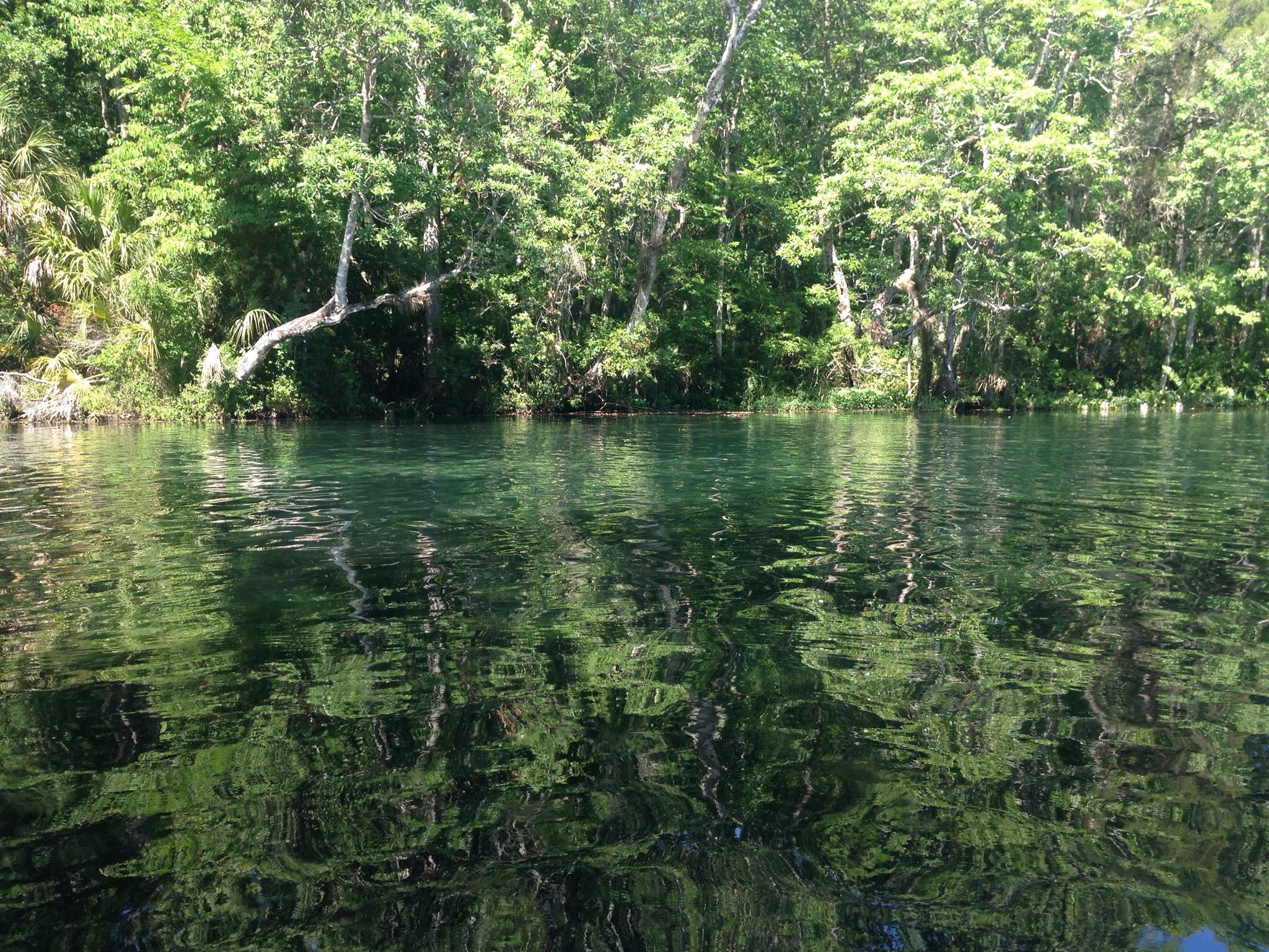 Nature S Resort Homosassa Springs